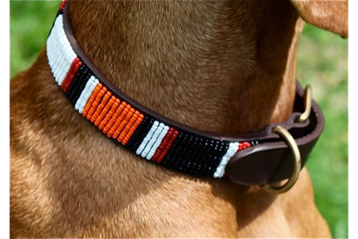 Beaded dog collar