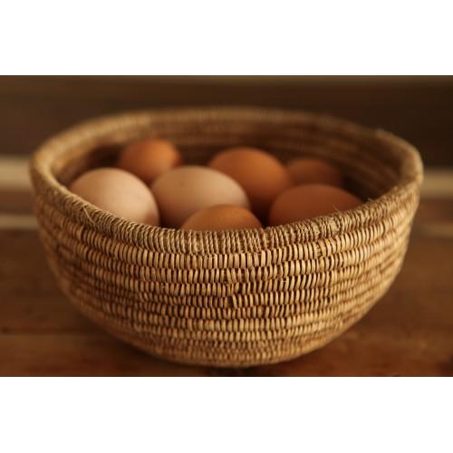 Tucan basket bowls