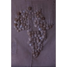 Shela sand dollars; an African portrait